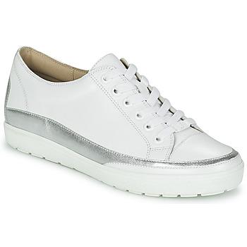 Sko Dame Lave sneakers Caprice BUSCETI Hvid / Sølv