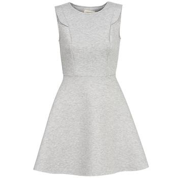 textil Dame Korte kjoler Naf Naf ELOLA Grå