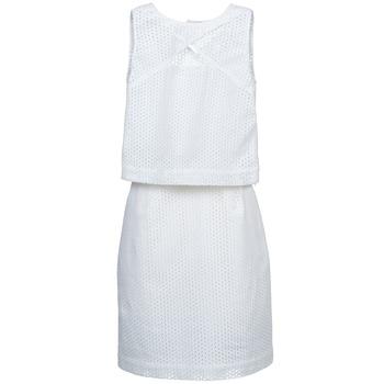 textil Dame Korte kjoler Kookaï BOUJETTE Hvid
