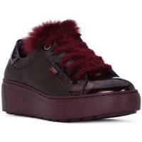 Sko Dame Lave sneakers CallagHan PANDORA MOON LINE Rosso