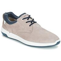 Sko Herre Lave sneakers Lloyd ACHILLES Beige