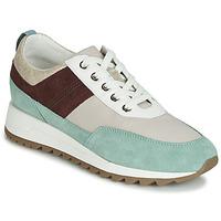 Sko Dame Lave sneakers Geox D TABELYA Beige / Brun / Grøn
