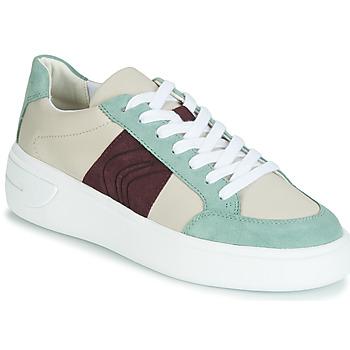 Sko Dame Lave sneakers Geox D OTTAYA Fløde / Grøn