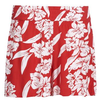textil Dame Shorts Volcom ALOHA HA SHORT Rød
