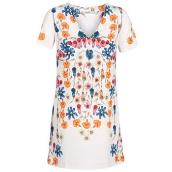 textil Dame Korte kjoler Desigual CORK Hvid