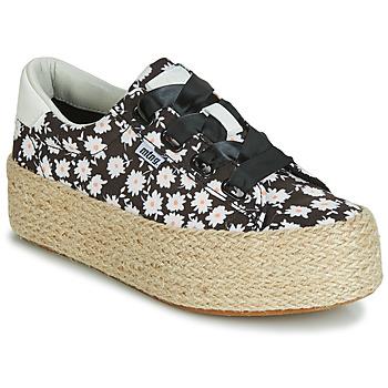 Sko Dame Lave sneakers MTNG WANDA Hvid / Sort