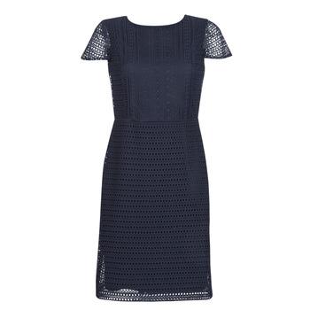 textil Dame Korte kjoler Lauren Ralph Lauren NAVY SHORT SLEEVE DAY DRESS Marineblå