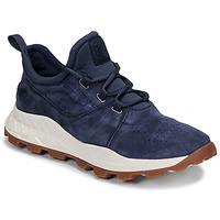 Sko Herre Lave sneakers Timberland BROOKLYN LACE OXFORD Blå