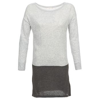 textil Dame Korte kjoler DDP EMMI Sort / Grå