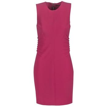 textil Dame Korte kjoler Marciano AMAYA Pink