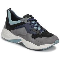 Sko Dame Lave sneakers Timberland DELPHIVILLE LEATHER SNEAK Sort