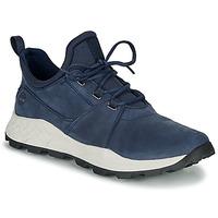 Sko Herre Lave sneakers Timberland BROOKLYN LACE OXFORD Blå