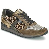 Sko Dame Lave sneakers Kennel + Schmenger LIZAN KAMEL