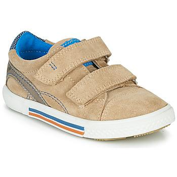 Sko Dreng Lave sneakers Catimini PERRUCHE Beige