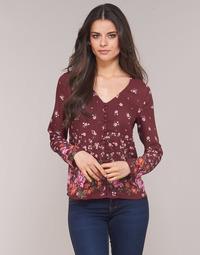 textil Dame Toppe / Bluser Casual Attitude LICINIA Bordeaux