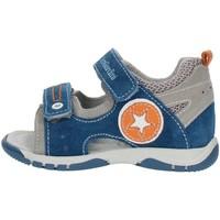 Sko Dreng Sandaler Nero Giardini P823141M Gray blue and orange