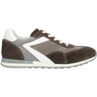 Sko Herre Lave sneakers Nero Giardini P800241U Smoke and white