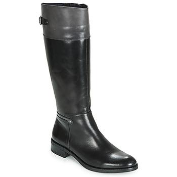 Sko Dame Chikke støvler Dorking TIERRA Sort / Grå