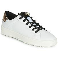 Sko Dame Lave sneakers Geox D PONTOISE Hvid / Kobber