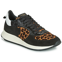 Sko Dame Lave sneakers Philippe Model MONTECARLO Sort / Leopard