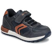 Sko Dreng Lave sneakers Geox B ALBEN BOY Blå / Cognac