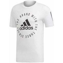 textil Herre T-shirts m. korte ærmer adidas Originals Sid Tee Hvid