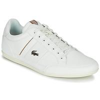 Sko Herre Lave sneakers Lacoste CHAYMON 319 1 Hvid