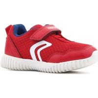 Sko Børn Lave sneakers Geox B Waviness B.B B822BB 014BU C7213 red