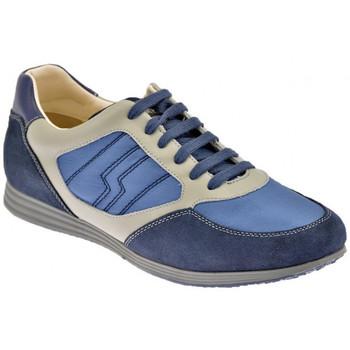 Sko Herre Lave sneakers Lumberjack  Blå
