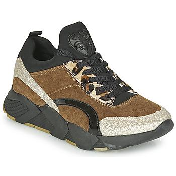 Sko Dame Lave sneakers Philippe Morvan VERSO V2 GLITTER FIN Brun / Sort