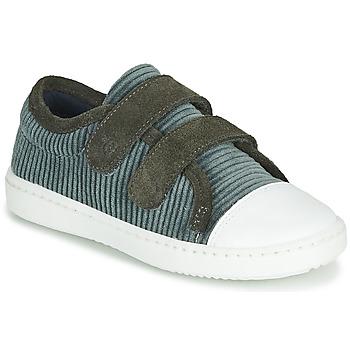 Sko Børn Lave sneakers Citrouille et Compagnie LILINO Grå