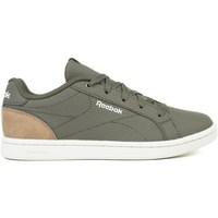 Sko Børn Lave sneakers Reebok Sport Royal Complete Cln 2 Oliven