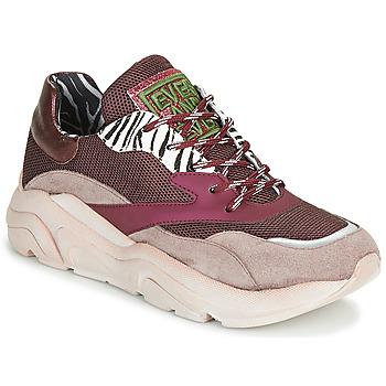 Sko Dame Lave sneakers Meline JOLI Pink / Beige