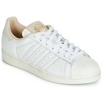 Sko Lave sneakers adidas Originals SUPERSTAR Hvid / Beige