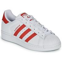 Sko Børn Lave sneakers adidas Originals SUPERSTAR J Hvid / Rød