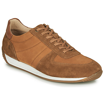 Sko Herre Lave sneakers Casual Attitude LARY Kamel