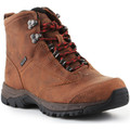 Vandresko Ariat  Trekking shoes  Berwick Lace Gtx Insulated 10016229