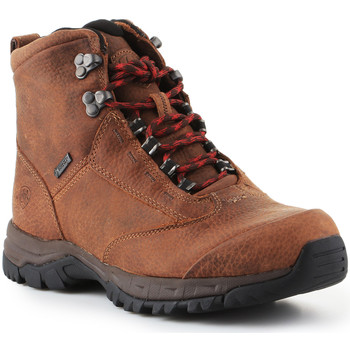 Sko Dame Vandresko Ariat Trekking shoes  Berwick Lace Gtx Insulated 10016229 brown