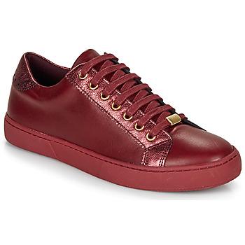 Sko Dame Lave sneakers André BERKELEY Bordeaux
