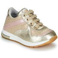 Sko Pige Lave sneakers GBB LELIA Beige / Guld