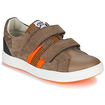 Sko Dreng Lave sneakers GBB AVEDON Brun