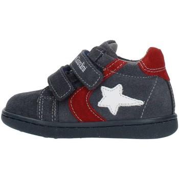 Sko Børn Høje sneakers Nero Giardini A919000M Blue