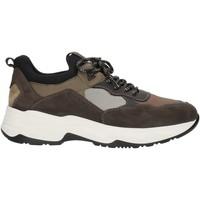 Sko Herre Lave sneakers Nero Giardini A901272U Grey