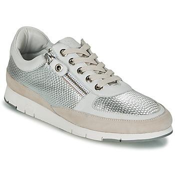 Sko Dame Lave sneakers TBS CAVANNA Sølv / Beige