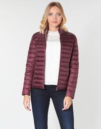 textil Dame Dynejakker JOTT CHA Aubergine