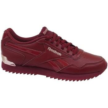 Sko Dame Lave sneakers Reebok Sport Royal Glide Bordeaux