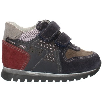 Sko Dreng Lave sneakers Nero Giardini A724331M Blue Gray and Bordeaux