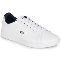 Sko Herre Lave sneakers Lacoste CARNABY EVO TRI1 SMA Hvid