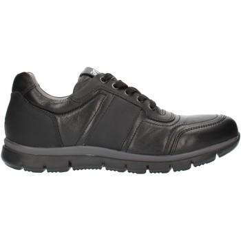 Sko Herre Lave sneakers Nero Giardini A800482U Black
