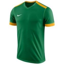 textil Dreng T-shirts m. korte ærmer Nike JR Dry Park Derby II Grøn